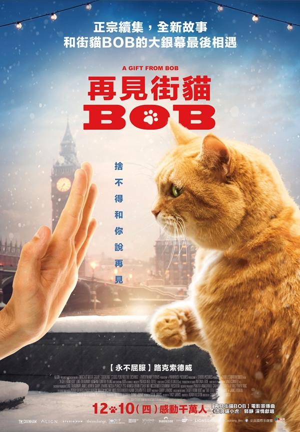 寵物電影推薦再見街貓BOB