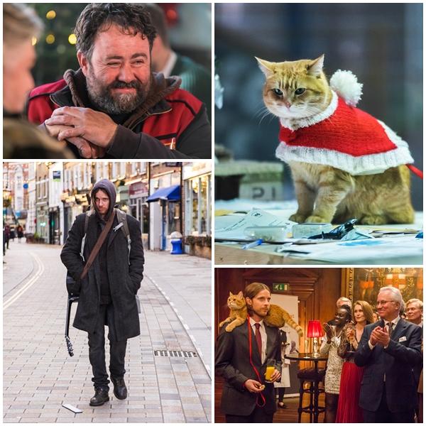 寵物電影推薦再見街貓